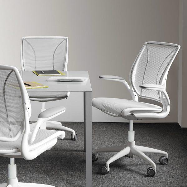 humanscale diffrient world chair 1