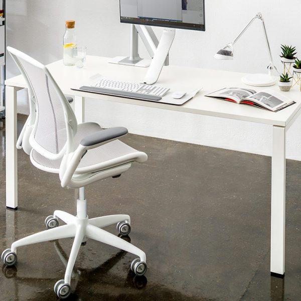 humanscale diffrient world chair 2