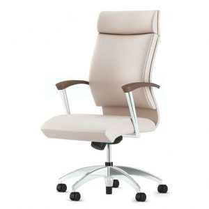 Alan Desk CS2 Executive Chair OFS