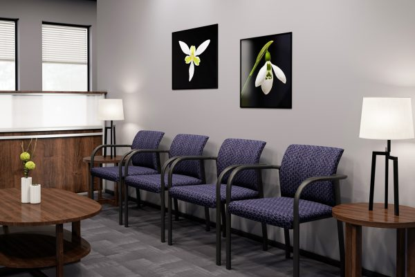 link eaiting room purple 1536x1024
