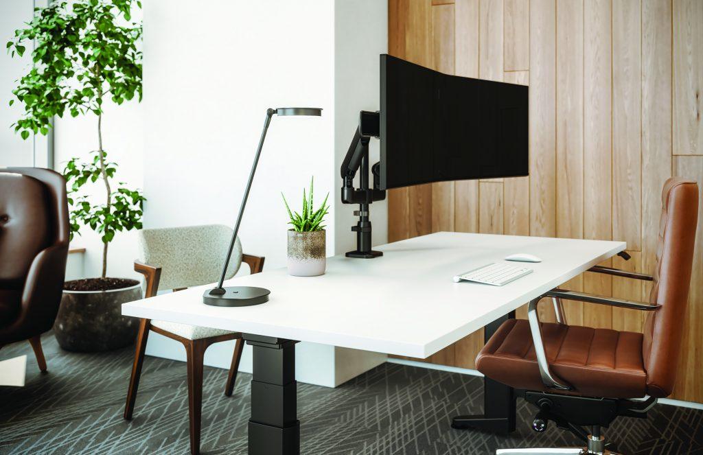 lily led desk lamp