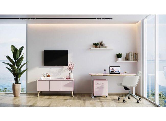 alan-desk-chameleon-home-office-darran