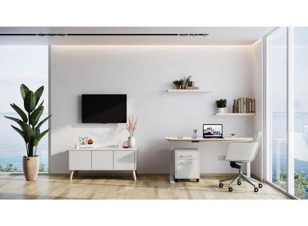 chameleon-home-office-furniture